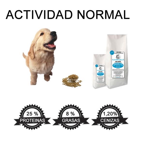 actividad normal